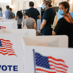 Dozens of Companies Urge Senate to Pass Law Nationalizing U.S. Elections: Override 'Abusive State Laws'